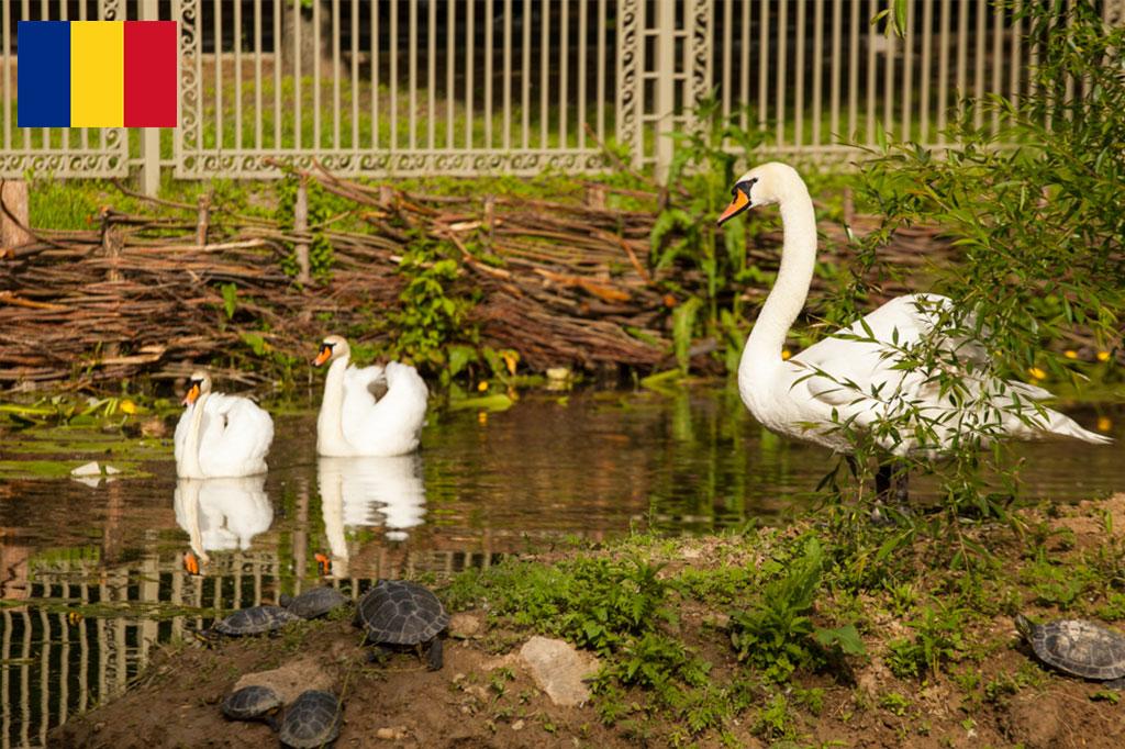 Природа и спорт в окръг Долж
